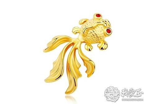鱼悦虞心 飘逸灵动的金鱼