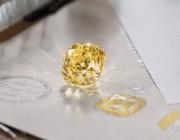 蒂芙尼稀世杰出珠宝展非凡品牌实力