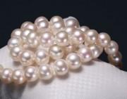 知识 | 有核珍珠与无核珍珠的区别