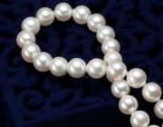 知识 | 珍珠贝的种类有哪些