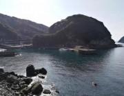 游記 | 日本高知縣探秘,了解下這個占據了全球紅珊瑚產量半壁江山的地方