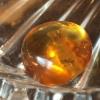 ·虫珀欧洲回流老蜜蜡原矿无优化纯天然波罗的海琥珀勒子·